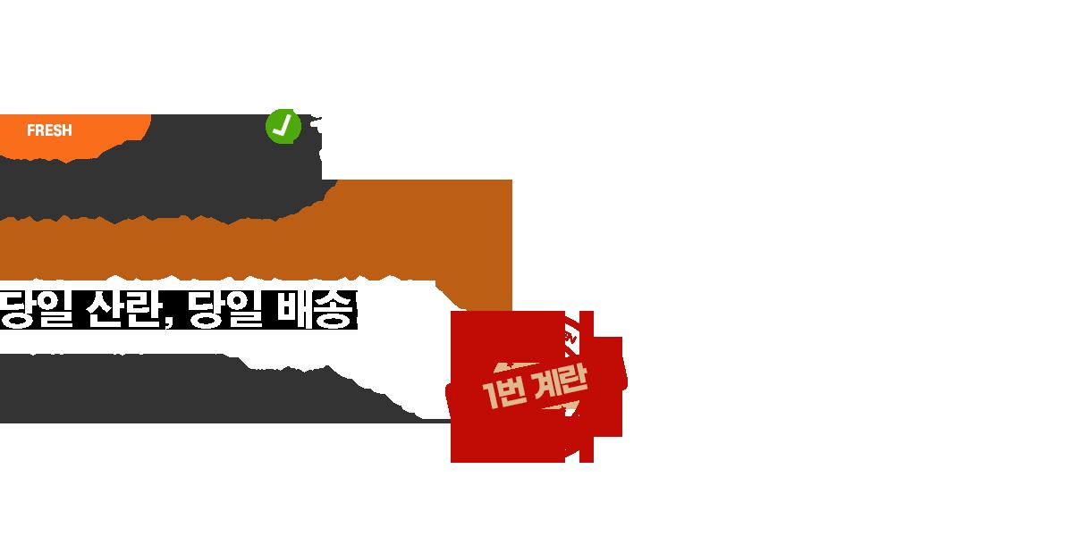 메인비쥬얼텍스트3